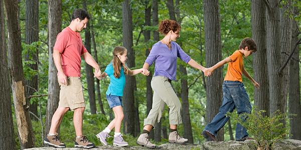 Focus On Family Fun